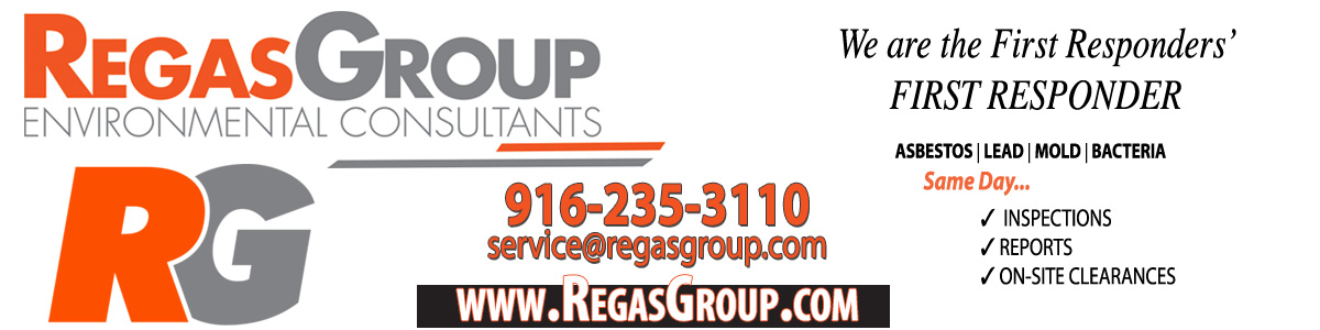 RegasGroup Environmental Consultants